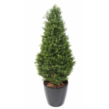 BUXUS RED DAY TOPIARY UV, 125cm