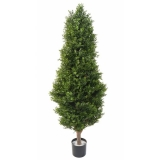 BUXUS RED DAY TOPIARY UV, 155cm