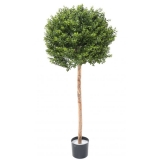 BUXUS KOULE RED DAY ROD UV, 110cm