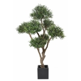 OLIVIER BONSAI MULTI HEAD, 270cm