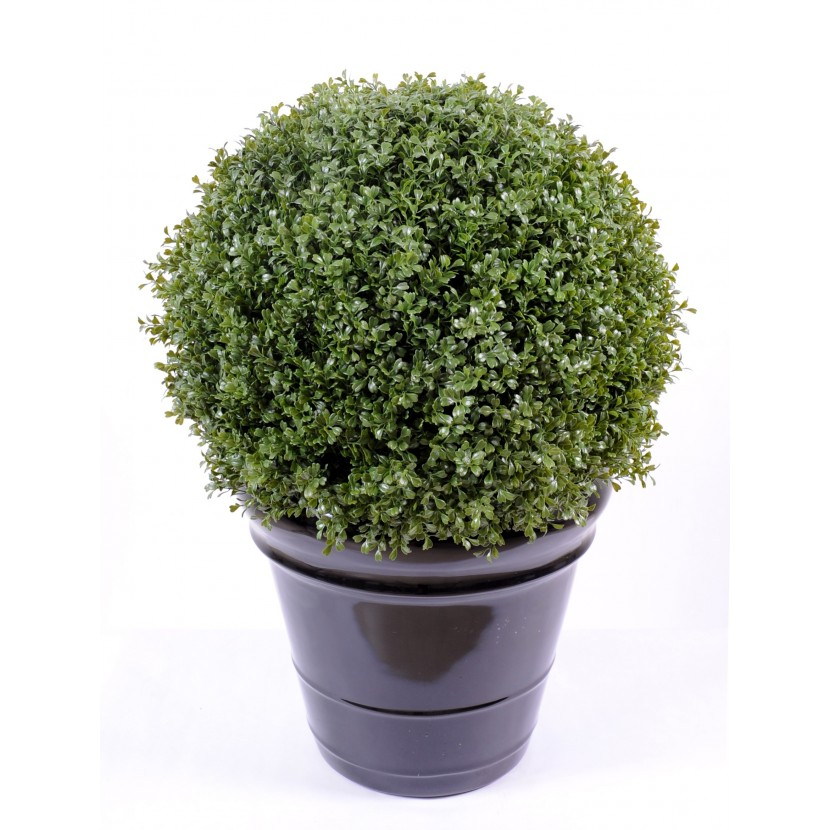 BUXUS KOULE REGULAR NEW, 89cm