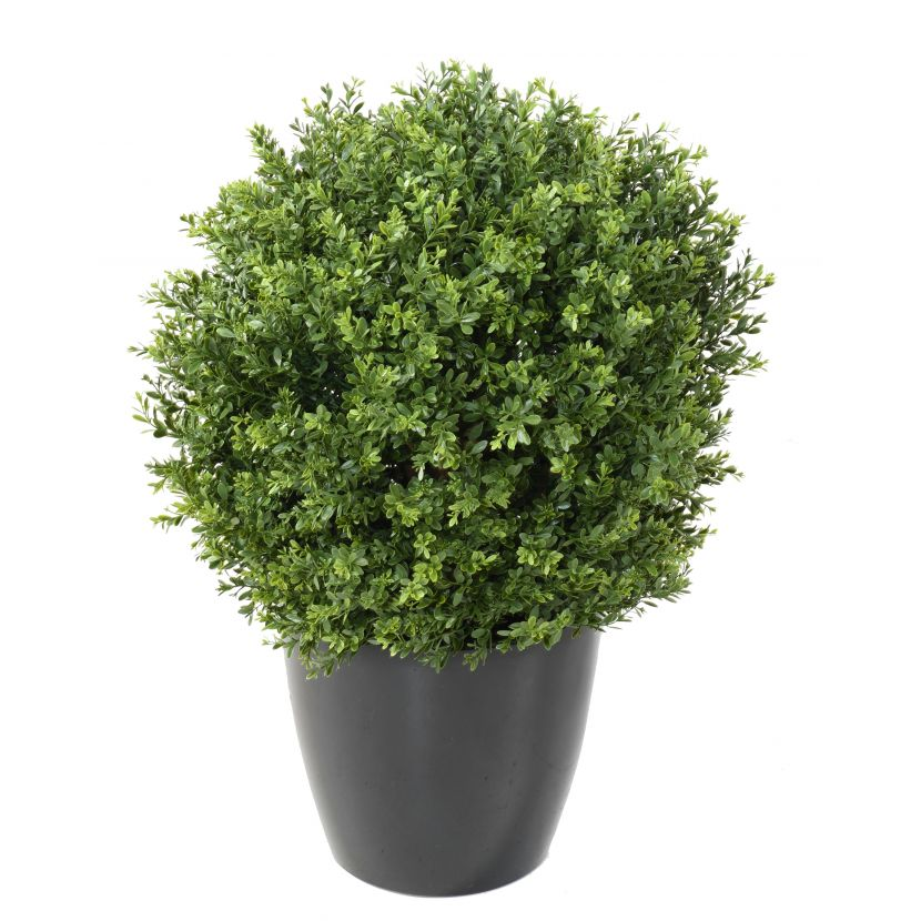 BUXUS KOULE RED DAY UV, 65cm