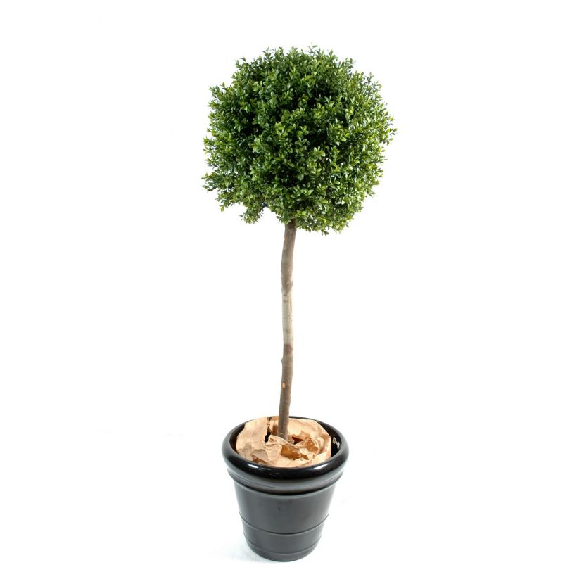BUXUS KOULE STEM NEW UV, 140cm