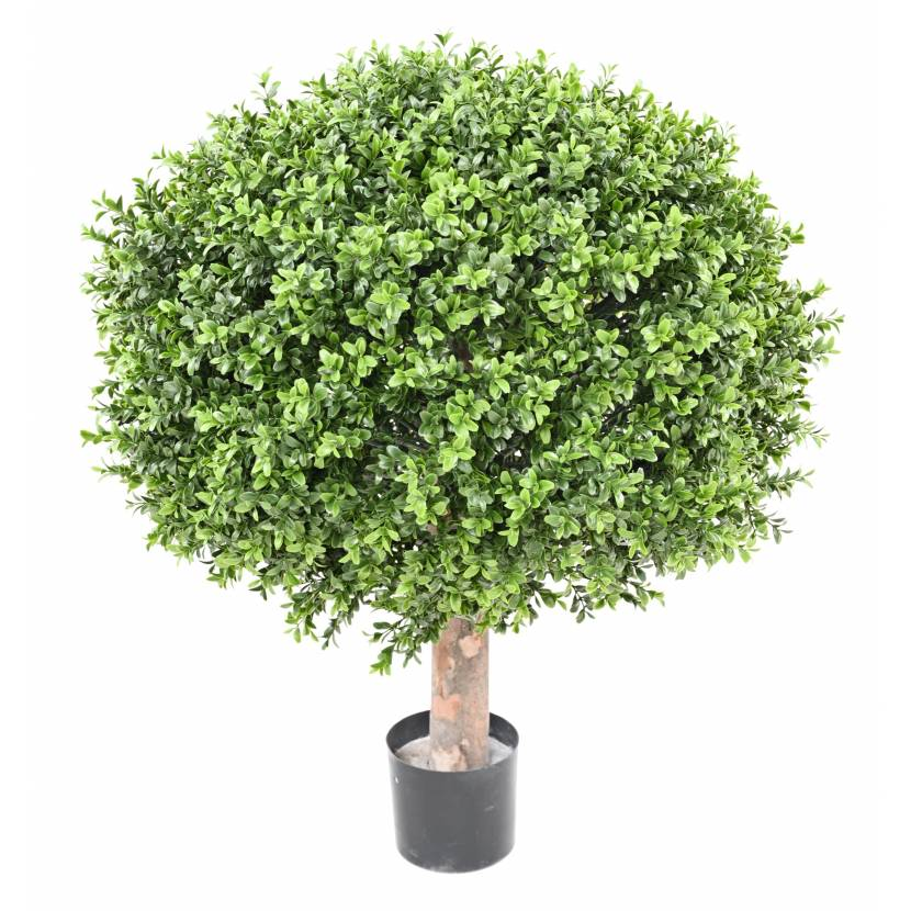 BUXUS KOULE REGULAR NEW UV, 77cm