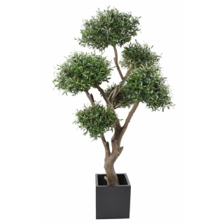 OLIVIER BONSAI MULTI HEAD, 235cm